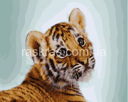 BRM28451 Картина раскраска Тигрик