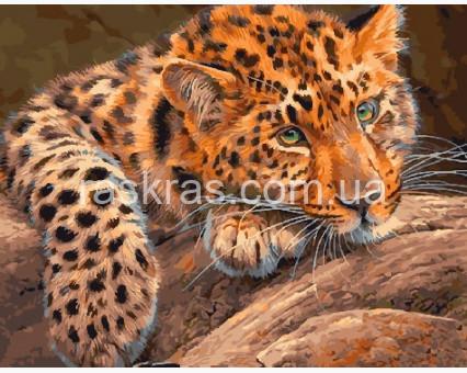 BRM29463 Картина по номерам Ягуар BrushMe