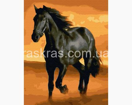 BRM32937 Картины по номерам Черный конь