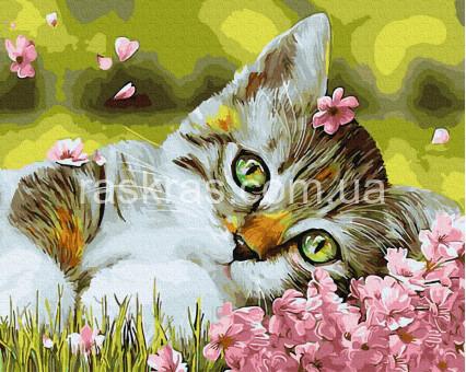 BRM34634 Раскраски по номерам Котенок в цветочках