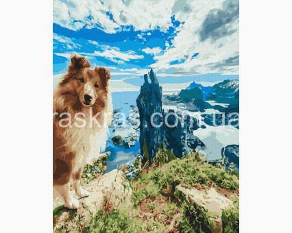 BRM39159 картина по номерам Шелти на скале НикиТошка