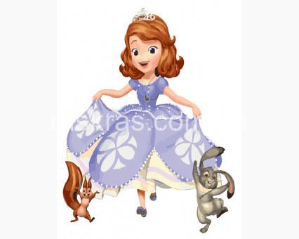 BRM5489 Картина раскраска Друзья принцессы