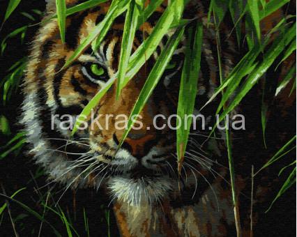 BRM7418 картина по номерам Взгляд хищника Rainbow Art