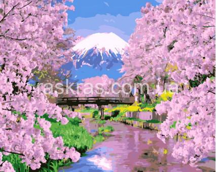 BRM9506 Картина раскраска Цветущая сакура