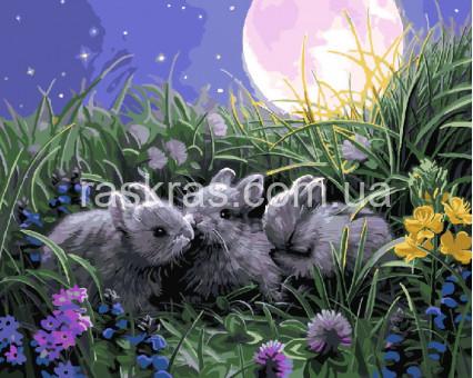 BRM9525 Картина раскраска Милые зайчата