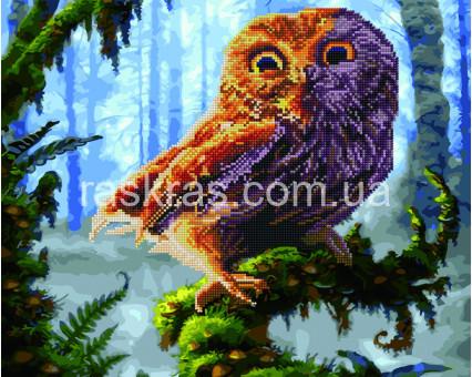 GZS1097 алмазная картина Сова в лесу Rainbow Art