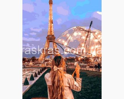 MR-Q2274 картина по номерам Визитная карточка Парижа Mariposa