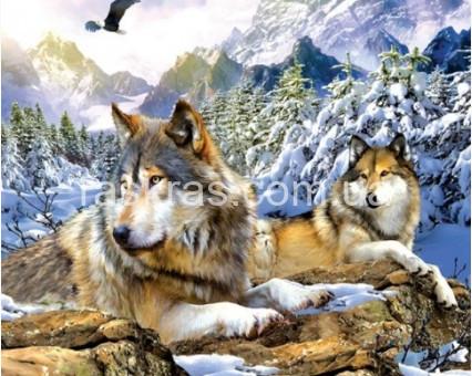 TN1019 алмазная вышивка Верные волки My Art