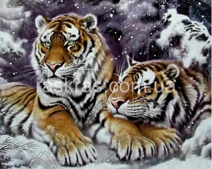 TN1020 алмазная вышивка Пара тигров в снегу My Art
