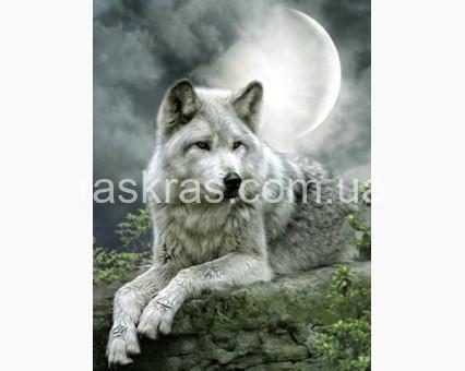 TN503 алмазная вышивка Волк под луной My Art