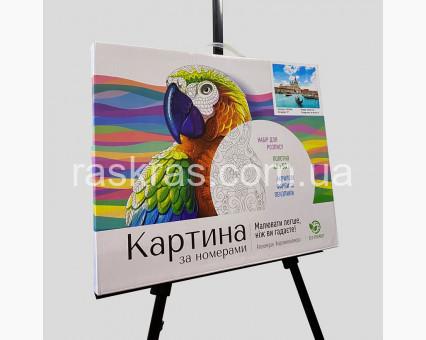 BRM7418 картина по номерам Взгляд хищника Rainbow Art фото набора