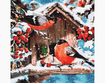 Купить KHO4041 Раскраска по номерам Кормушка для снегирей ...