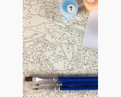 AS0135 Картина раскраска Цветущая набережная ArtStory