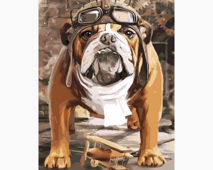 AS0168 Картина раскраска К полёту готов ArtStory