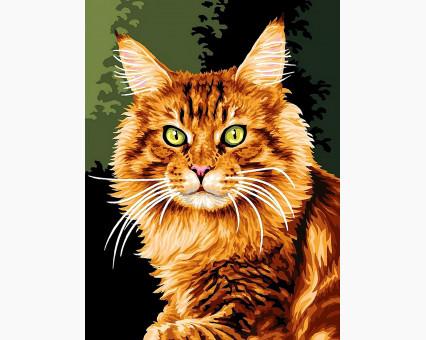 VK176 Картина раскраска Норвежская кошка DIY Babylon