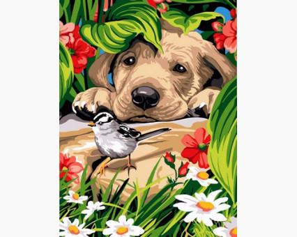 VK203 Картина раскраска Птичка и любопытный щенок DIY Babylon