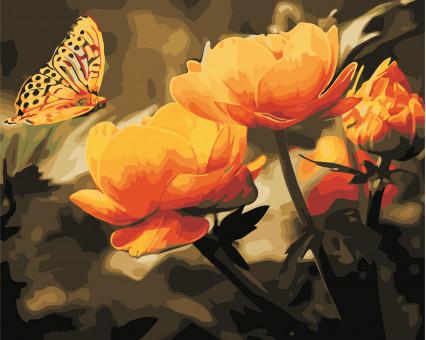 AS0351 картина по номерам Желтые цветы и бабочка ArtStory