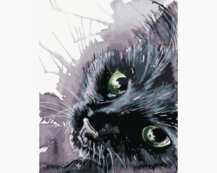 AS0416 картина по номерам Черный кот ArtStory