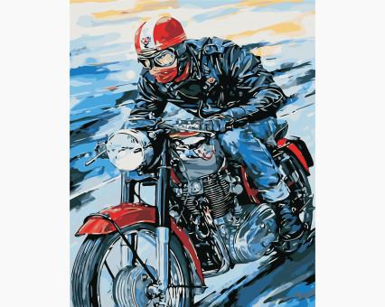 AS0441 картина по номерам Мотоциклист ArtStory