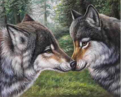 DM-271 алмазная вышивка Влюбленные волки ТМ Алмазная мозаика