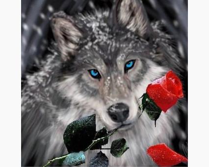 DM-272 алмазная вышивка Волк с розой ТМ Алмазная мозаика