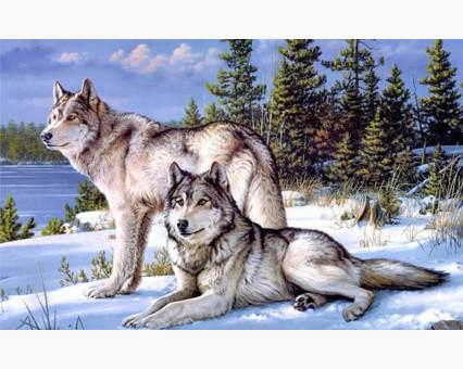 DM-276 алмазная вышивка Пара волков ТМ Алмазная мозаика