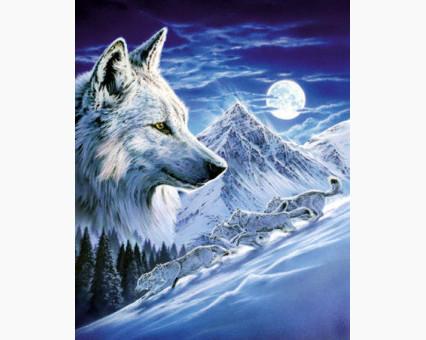 DM-278 алмазная вышивка Волки в полнолуние ТМ Алмазная мозаика