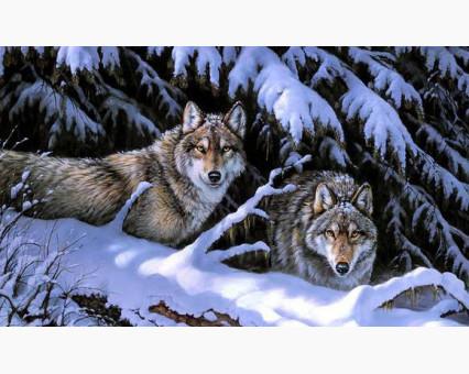 DM-280 алмазная вышивка Волки на снегу ТМ Алмазная мозаика