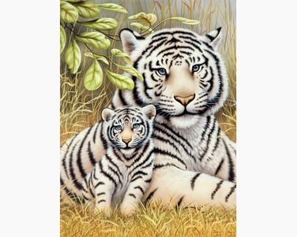 DM-284 алмазная вышивка Любовь тигрицы ТМ Алмазная мозаика