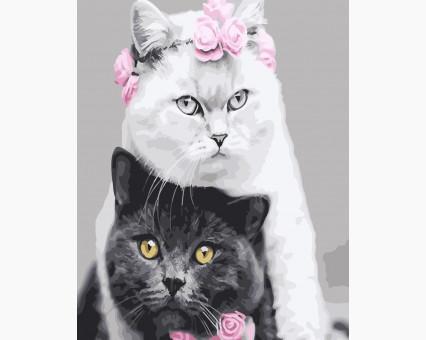 Купить BK-GX26128 Картину раскраска Белая кошка, черный ...