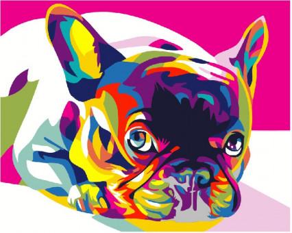 PGEX5379 Картина раскраска Радужный французский бульдог Brushme Premium