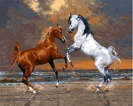 BRM8768 Картина раскраска Лошади на берегу