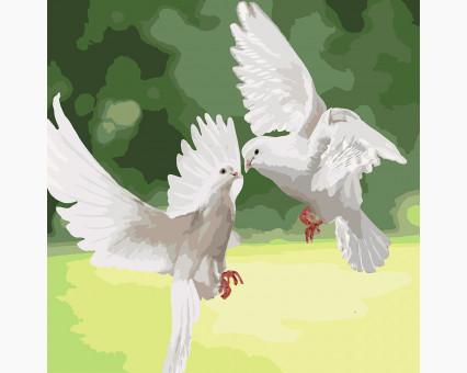 KHO4149 картина по номерам без коробки Белые голуби Идейка