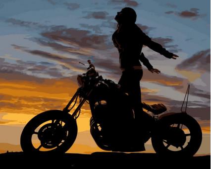 MR-Q2218 картина по номерам Мотоциклистка Mariposa