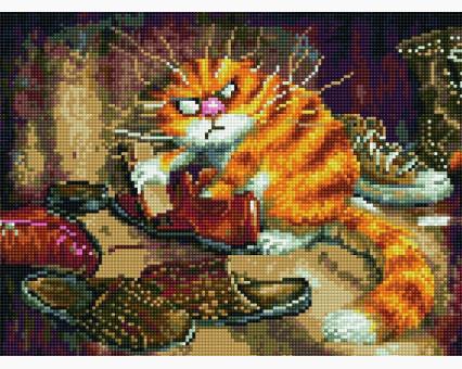 EJ883 алмазная живопись на подрамнике Недовольный кот Rainbow Art