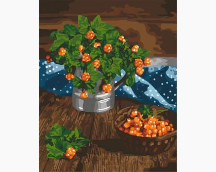 KHO5575 картина по номерам без коробки Царские ягоды Идейка