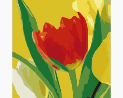 MS14055 картины по номерам Триптих. Разноцветные тюльпаны DIY Babylon