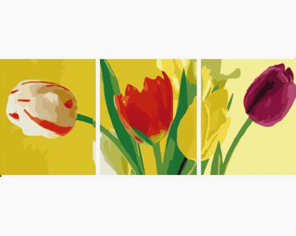 MS14055 картины по номерам Триптих. Разноцветные тюльпаны DIY Babylon фото набора