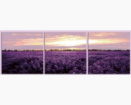 MT3063 картины по номерам Триптих. Лавандовое поле DIY Babylon