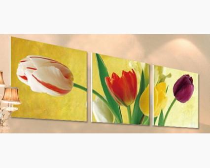 MT3075 картины по номерам Триптих. Разноцветные тюльпаны Menglei (Китай)