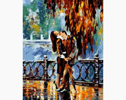 VP081 картина по номерам Поцелуй после дождя DIY Babylon