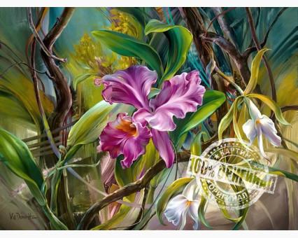 VP101 картина по номерам Прекрасные орхидеи DIY Babylon фото набора