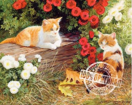 VP133 картина по номерам Два кота DIY Babylon фото набора
