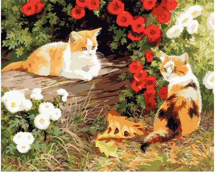 VP133 картина по номерам Два кота DIY Babylon