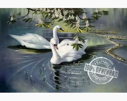 VP233 картина по номерам Пара лебедей DIY Babylon фото набора