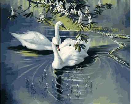 VP233 картина по номерам Пара лебедей DIY Babylon