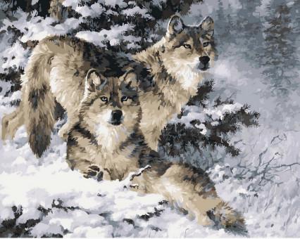 VP344 картина по номерам Пара волков DIY Babylon