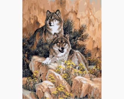 VP345 картина по номерам Волки DIY Babylon