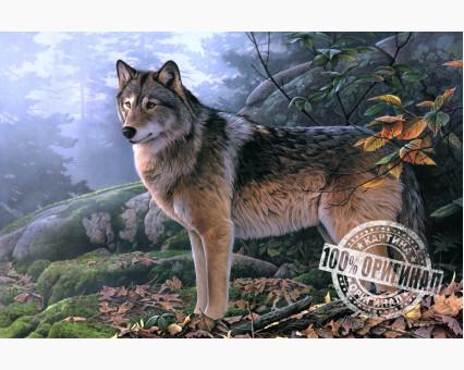 VP346 картина по номерам Волк в осеннем лесу DIY Babylon фото набора