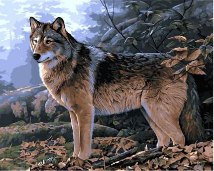 VP346 картина по номерам Волк в осеннем лесу DIY Babylon